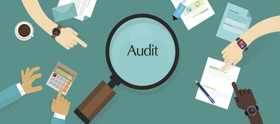 How Field Audit Software in Pakistan Improves Efficiency and Collaboration in your Business