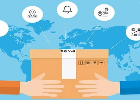 What Can Courier Companies With Courier Delivery Software in Pakistan Do for Your Business