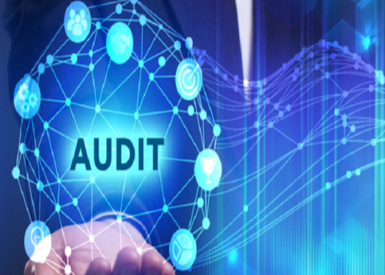 The Importance Of Conducting Safety Audits By Using Field Audit Software in Pakistan