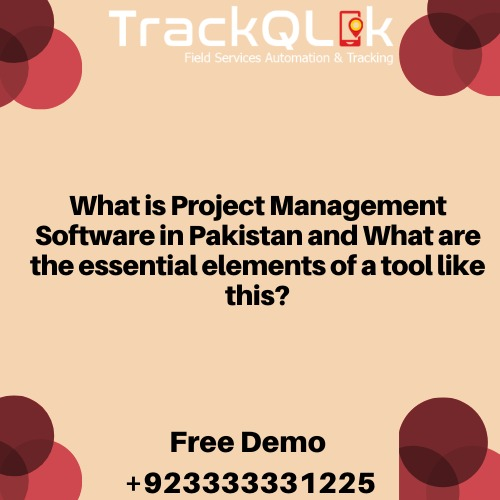 What is Project Management Software in Pakistan and What are the essential elements of a tool like this?